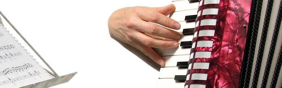 fisarmonica musicopoli